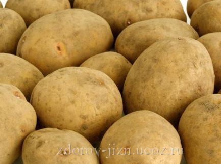 Картофель - картошка применение, польза и вред